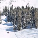 Алтайские Альпы — горнолыжный комплекс