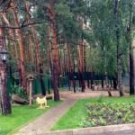 Санаторий «Окжетпес»
