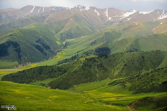 94118_priroda-kazahstana-bedenko-20