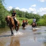 Конные туры в Казахстане
